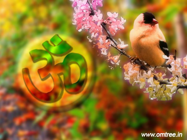 AUM Images Wallpapers